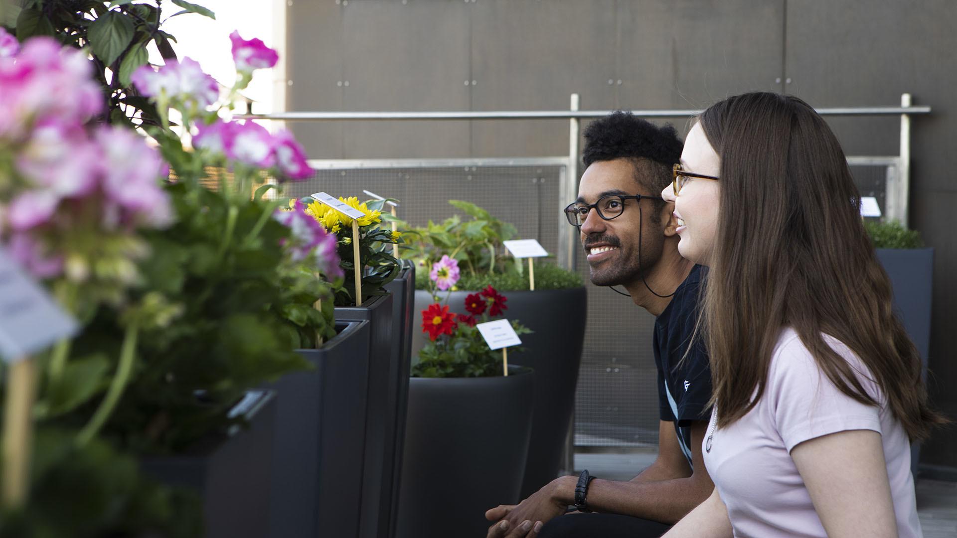 Nuori mies ja nainen katsovat kukkaistutuksia Kiasman parvekkeella.